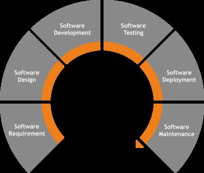 software_process
